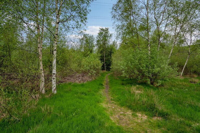 Isvik Hageby og diverse, 5574 VINDAFJORD